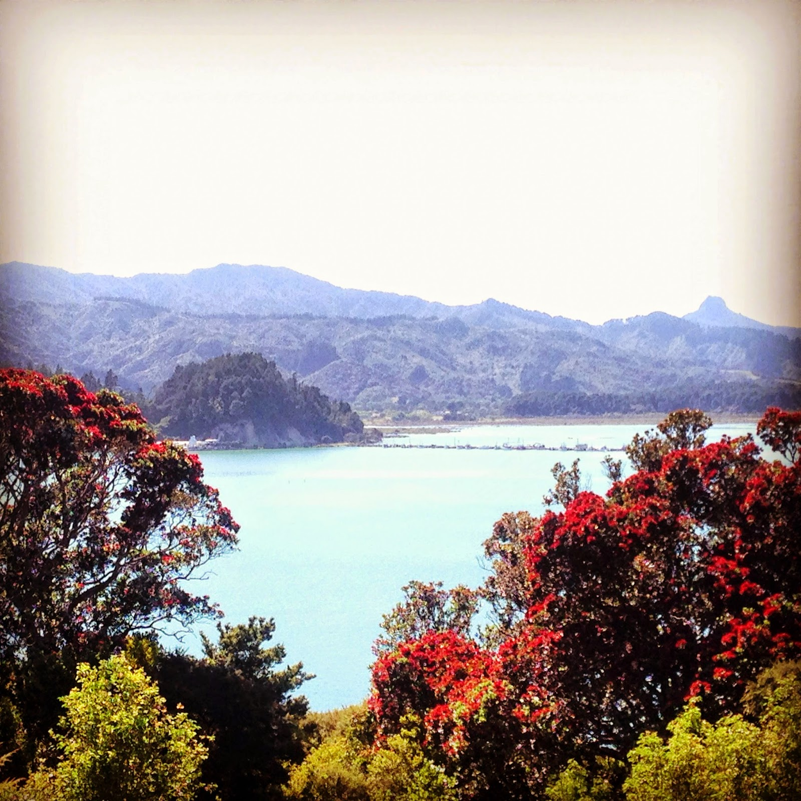 10 Things I love about The Coromandel