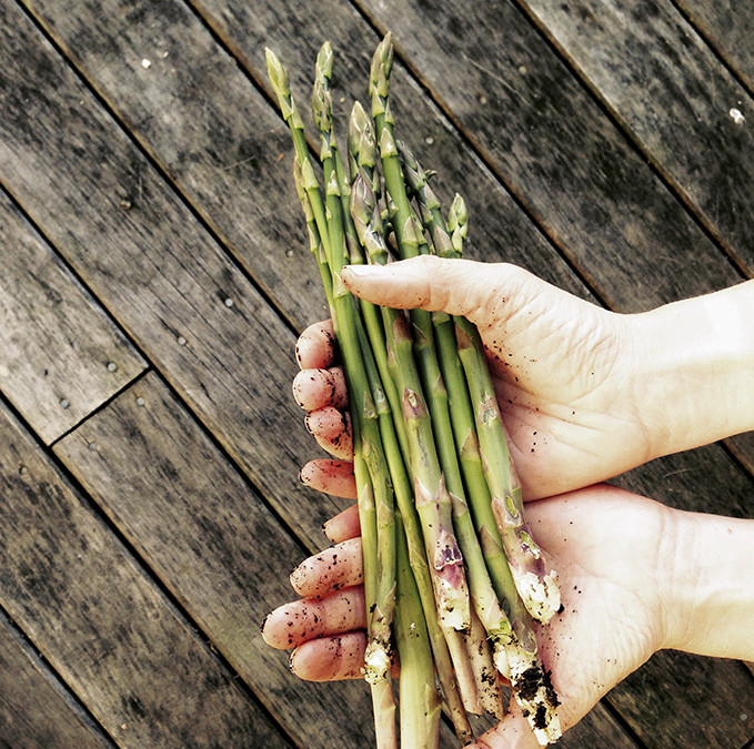 What is your favourite way to eat asparagus?