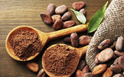 What is the difference between cocoa and cacao?