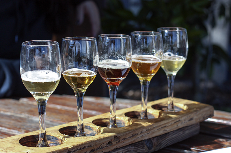 A craft brewery tour of the Coromandel